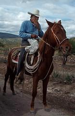 Vaquero - Cowboy; camino hacia Milpillas de la Sierra, al sur de Jiménez de Teul, Zacatecas, Mexico