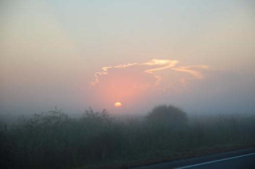usa fog sunrise nikon nebel unitedstates florida d40 hendrycounty fisherbray cr832 countyroad832