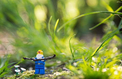 LEGO man in nature