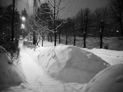 winter white snow night latvia ogre snowdrifts