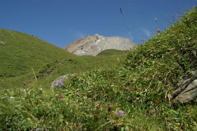 Klettersteig Engstligenalp : Sommer engstligenalp