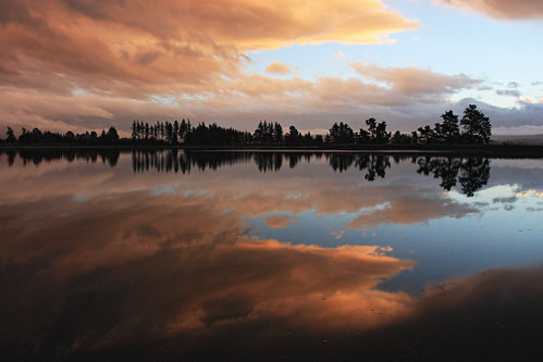 pink trees sunset newzealand sky cloud reflection water beautiful beauty rain silhouette clouds landscape evening landscapes peace outdoor dusk peach magenta tranquility nelson estuary southisland inlet tranquil waimeainlet ilobsterit