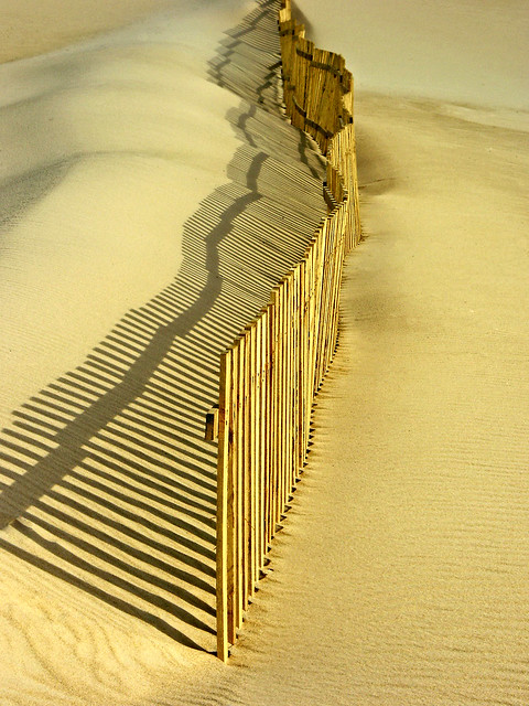 Bolonia - Empalizada / Stockade in the dunes
