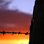 Barbed Wire Fence by Sunset