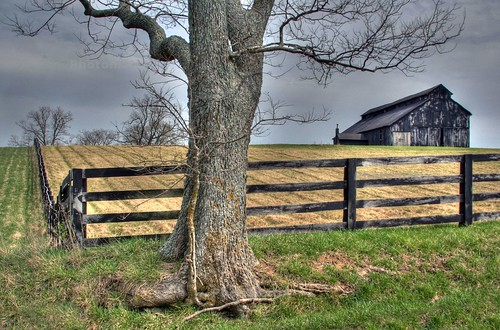 county tree barn fence landscape kentucky hdr fayette photomatix jackscreekpike