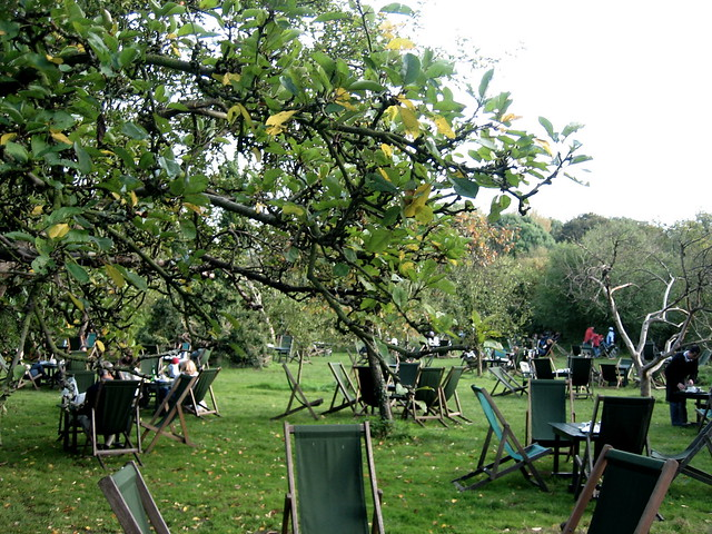 Relaxing at The Orchard, near Cambridge