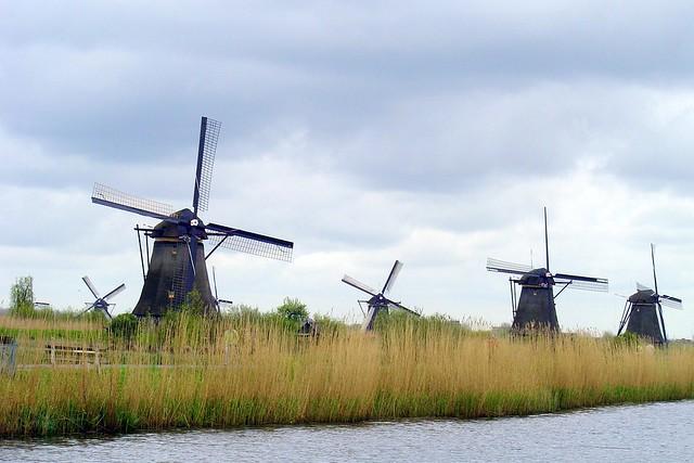 Kinderdijk Landscape