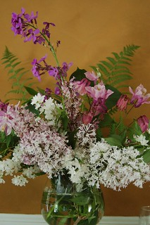 I love bringing in flowers from my garden   by denovich