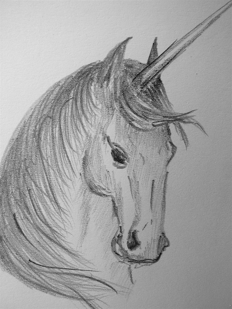 Unicorn sketch by koalie unicorn sketch by koalie