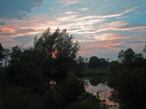 pink trees sunset sky orange nature weather clouds landscape pond swamp cumulus cirrocumulus cirrus