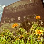 DavidSerkoProject-1-10