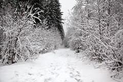 Trip to France Day #7 - Chamonix - 10, Dec - 02.jpg by sebastien.barre