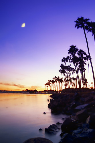 blue sky orange water sunrise bay rocks purple sandiego palmtrees missionbeach missionbay danalanding
