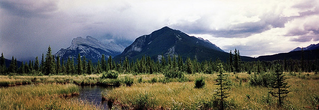 Panorama of Mountains and a Meadow (Banff National Park)