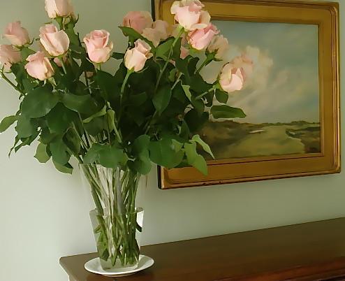 Ecuador-valentine's-roses