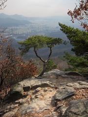 Gunung Bukhan