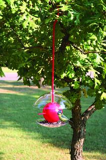 Birdpods House & Birdpods Feeder