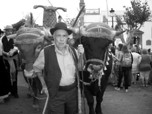 Daisy Díaz Peña señor con el ganado, firgas 2010