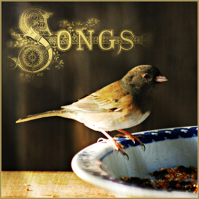 sing for your supper . . .