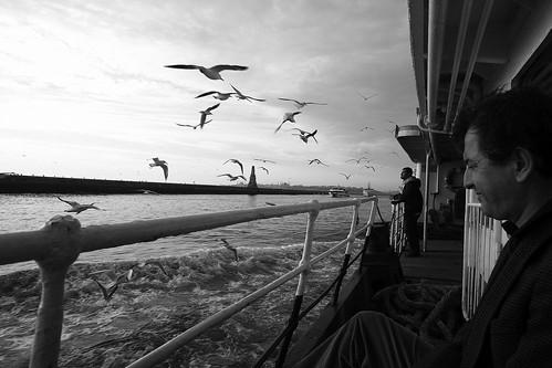 Il più bello dei mari è quello che non navigammo...   by ita145117