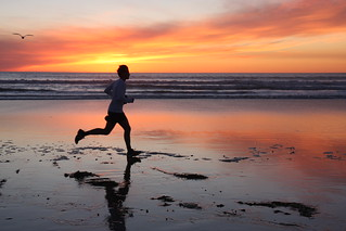 Run Away | by San Diego Shooter