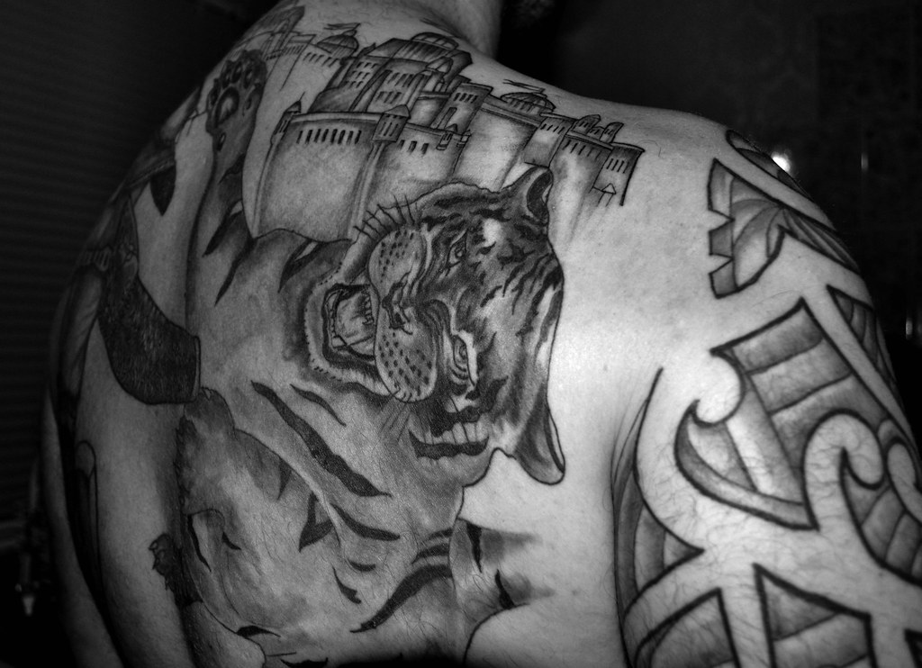 548f178337439 ... Another 2 hours done on my Gladiator Vs Tiger back Tattoo   by Jason  Gambone J