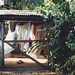 Guyane, foto: dav