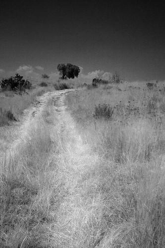 Las que se quedaron en el camino (2010) 12