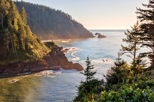 hartscove oregon coast pacificnorthwest pnw cascadehead seascape landscape canon sl1 sigma18250mmf3563dcmacrooshsm forest trees pacificocean view vista