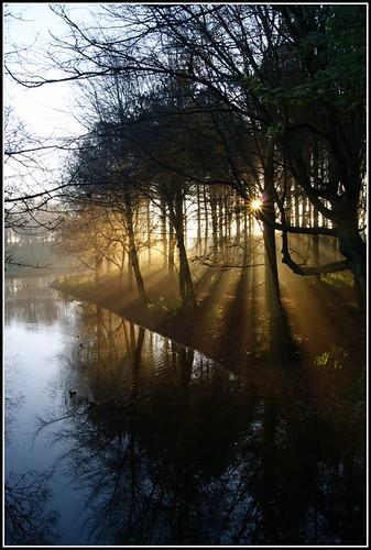 morning november autumn trees light sun mist reflection water pond sony ducks rays a330 sedgefield hardwickpark cadvan3 davidedson yahoo:yourpictures=reflections yahoo:yourpictures=autumn yahoo:yourpictures=landscape yahoo:yourpictures=lightshade yourpicturesmyautumn yahoo:yourpictures=duskdawn yahoo:yourpictures=powernature