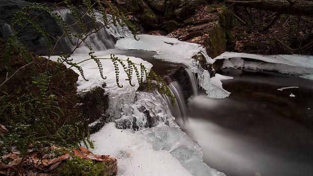 Small Pool - Bottom of Silver Spray Falls