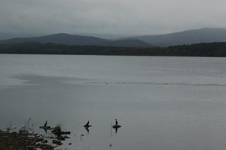 Yan Yean Reservoir