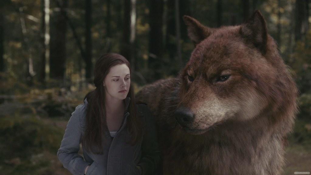 Výsledek obrázku pro jacob wolf