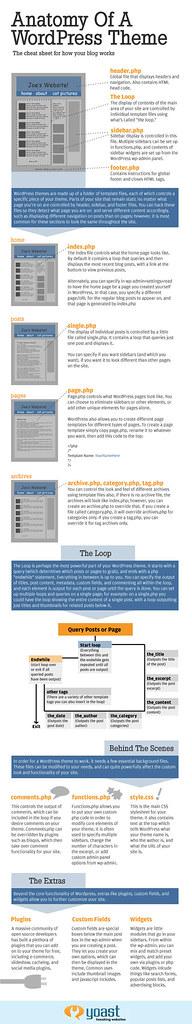 anatomie-theme-wordpress