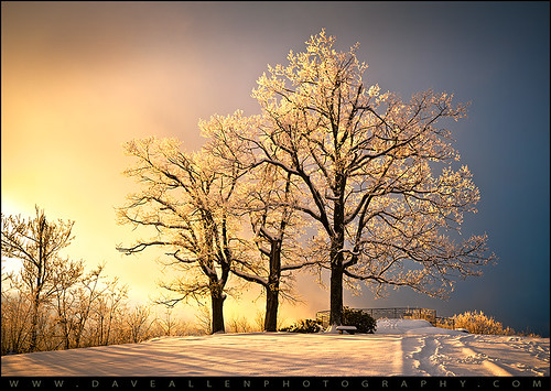 light amazing jumpoffrock nc daveallen laurelpark frost ice winter landscape trees tree frozen frozenlandscape outdoors nature cold nikon d700 1735mm singleexposure northcarolina carolina blueridgemountains nikond700 dramaticsky hendersonville photography westernnorthcarolina platinumpeaceaward mygearandmeplatinum platinumheartaward eveninglight hendersonvillenc icytrees frosty icecold backlighting backlight backlit sunlight crystals winterlandscape mygearandmediamond artistoftheyearlevel6 hoarfrost