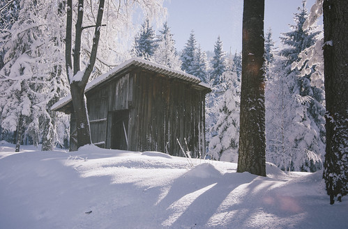 cabin wood woods tree trees winter wintertime snow snowy snowfall snowing ice cold cool abandoned forest forests forgotten house landscape landmark landscapes architecture natural nature sun sunshine sunny sunset suny beautiful beauty beautifulday love lovely color