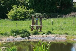 Nature Markers,Charlton Down,Dorset