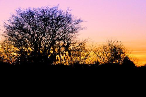 sunset archer florida december canont2i ambientlight