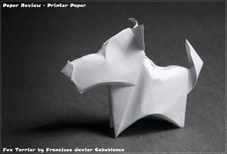 Printer/Copy Paper Review - Fox Terrier | by garibi ilan