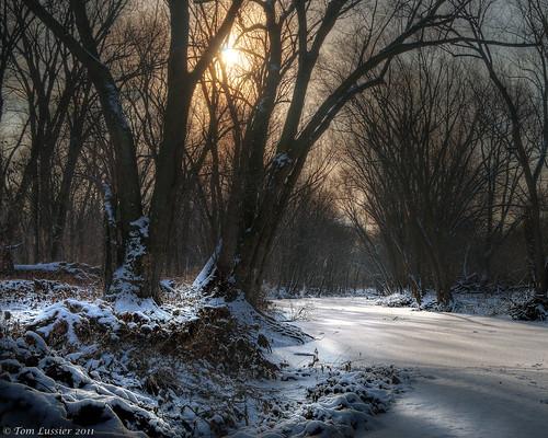 winter snow tree water forest sunrise river landscape virginia nikon potomacriver d300 loudouncounty tomlussier landscapespec2011