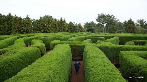 Maze (미로) | by golbenge (골뱅이)
