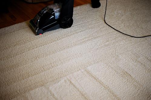 Carpet Deep Clean | by flossyflotsam