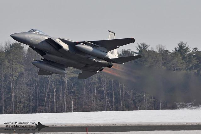 A Snow Burn Eagle