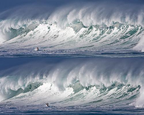 morning light hawaii big surf escape surfer dive wave surfing bigisland kona kailuakona lymans