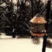 Ethereal Birdhouse In Snow