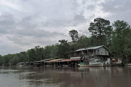 neworleans neworleansla neworleanscitytrip louisiana outdoor swamp river boattrip oldpearlriver slidell serene fishingboat boat vehicle landscape dnysmphotography