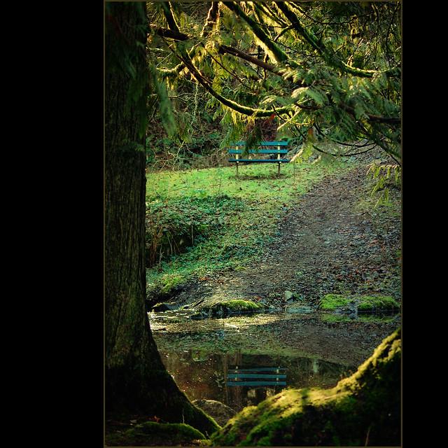 blue bench . . .