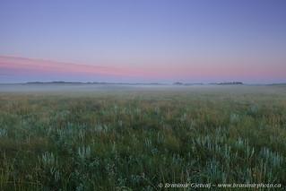 Misty dawn in Qu'Appelle Valley   by Branimir Gjetvaj