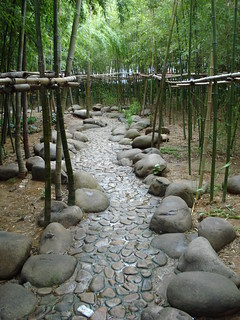 Path among bamboo | by J.A.G.A.