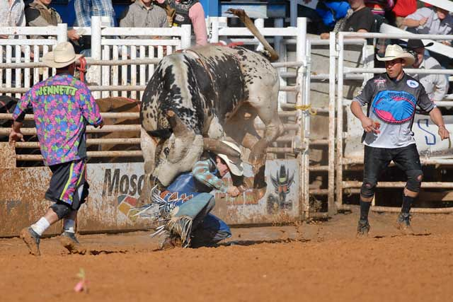 Big Trouble, Arcadia Rodeo